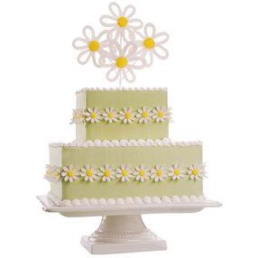 Daisy Burst Cake