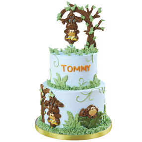 Monkey Around Cake for Boy