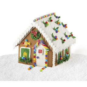 Snow Party House #1