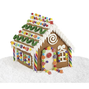 Snow Party House #2