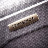 Samsonite TRX Lite 2 Piece Set in the color Silver.