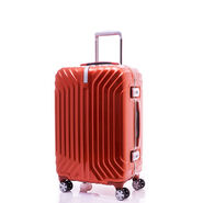 "Samsonite Tru-Frame Collection 20"" Spinner"