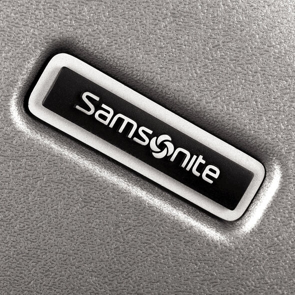 "Samsonite Inova 20"" Spinner in the color Metallic Silver."