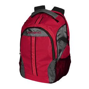Samsonite Foxboro Backpack in the color Orange.