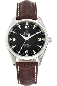 Seamaster Railmaster  Stainless Steel Automatic