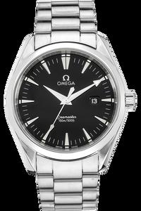 Stainless Steel Seamaster Aqua Terra Quartz