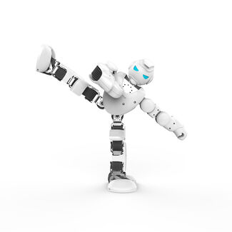 Alpha 1S Flexible Bluetooth-Controlled IOS and Android Compatible Humanoid Robot with 3D Visual PC Software