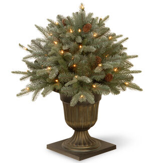 """Feel Real"" Frosted 26"" Artic Spruce Porch Bush with Lights"