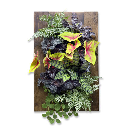 GroVert Living Wall Planter with Wooden Frame Kit