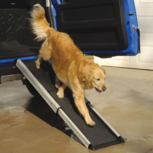 Dog Ramps for Cars and SUVs