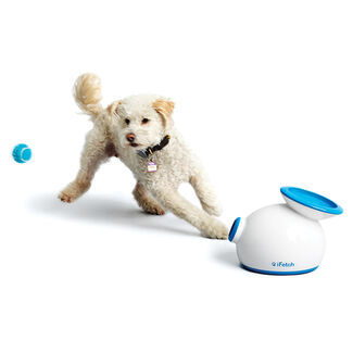 The iFetch® Automatic Ball Launcher for Dogs