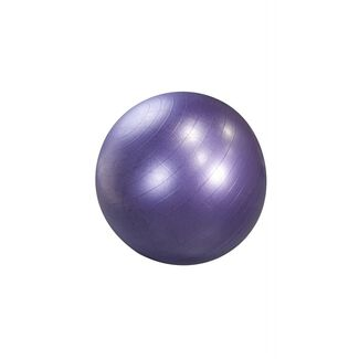 Stay Ball Weighted Stability Ball by Maha Fitness