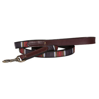 The Pendleton Collection Explorer Dog Leash