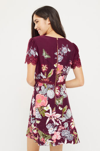 Oasis, BOTANY LACE DRESS Berry 3