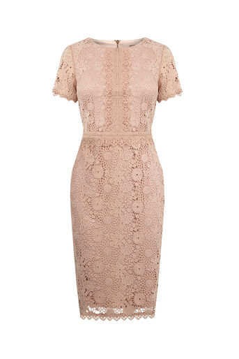 Oasis, GUIPURE LACE DRESS Natural 0