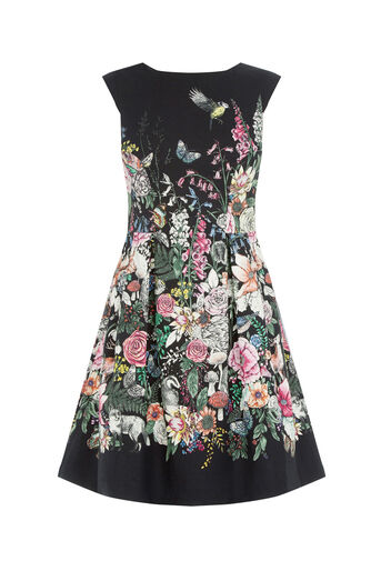 Oasis, FOREST PRINT SKATER DRESS Multi Blue 0