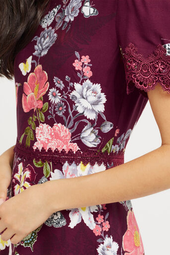 Oasis, BOTANY LACE DRESS Berry 4