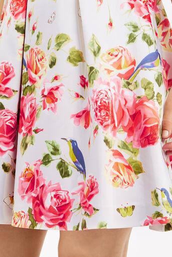 Oasis, ROSE SKATER DRESS Multi 4