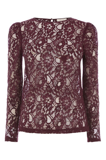Oasis, LACE PUFF SLEEVE TEE Dark Purple 0