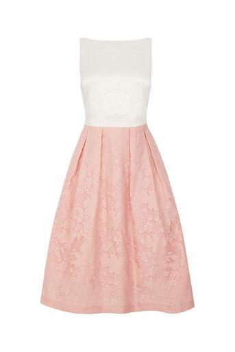 Oasis, Organza Midi Dress Multi Pink 0
