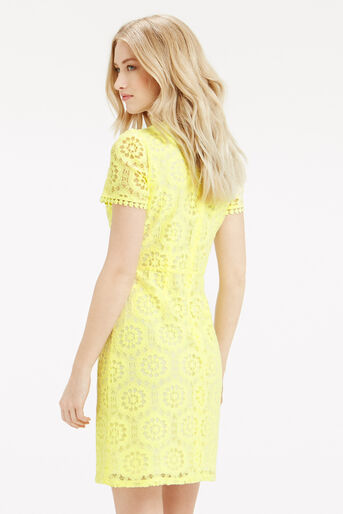 Oasis, Isla Lace Dress Bright Yellow 3