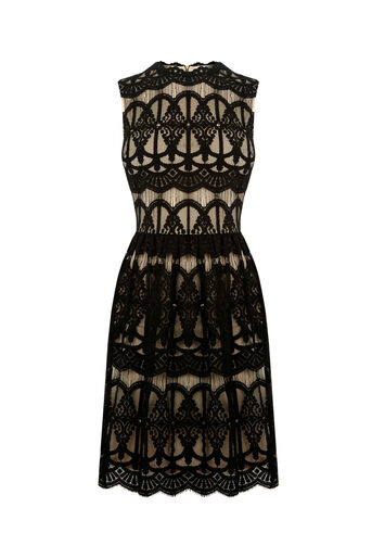 Oasis, THE LACE DRESS Black 0