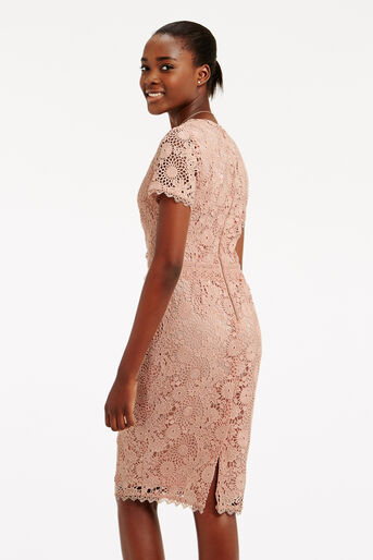 Oasis, GUIPURE LACE DRESS Natural 3