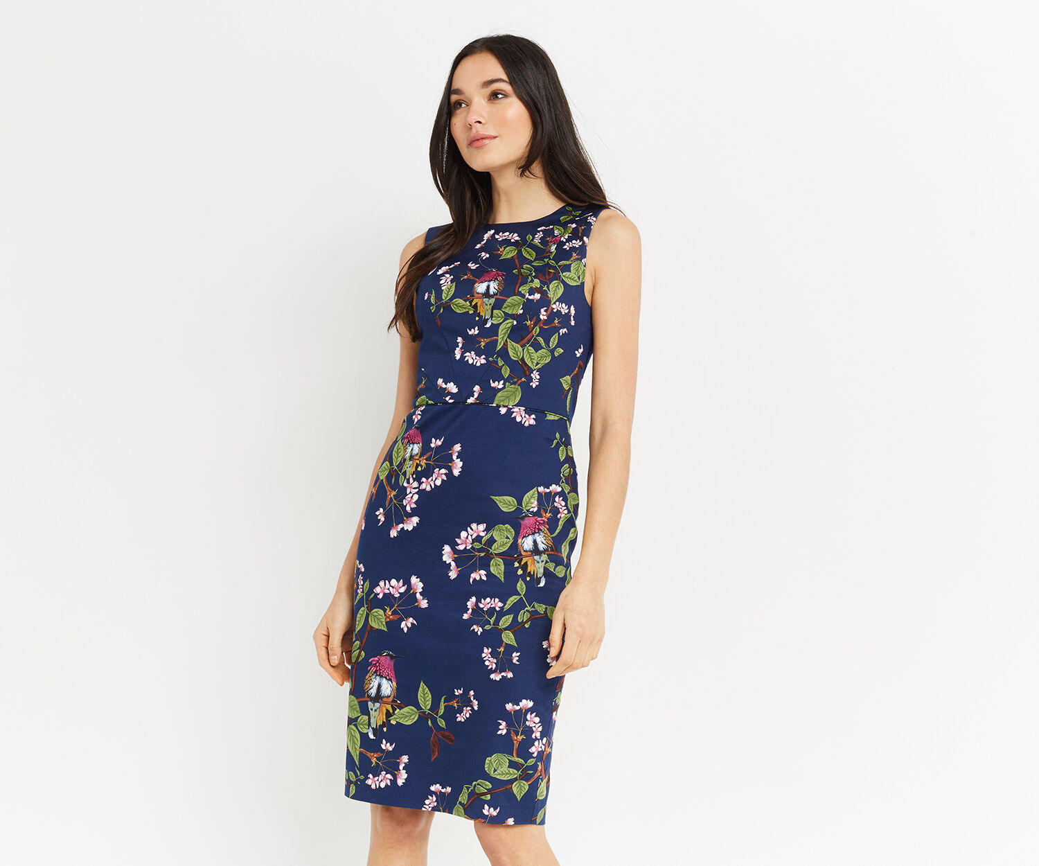 Oasis, TOPAZ BIRD PENCIL DRESS Multi 1