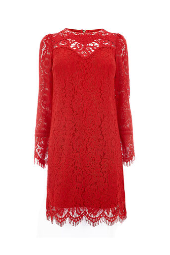 Oasis, LONG SLEEVE LACE TRIM SHIFT Rich Red 0