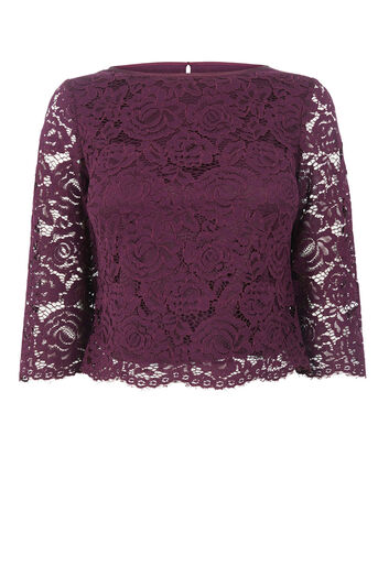 Oasis, LACE TOP Berry 0