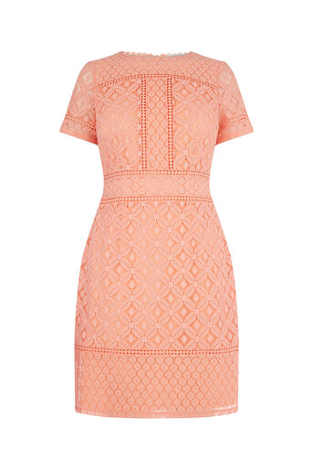 Oasis, ISLA LACE SHIFT DRESS Coral 0