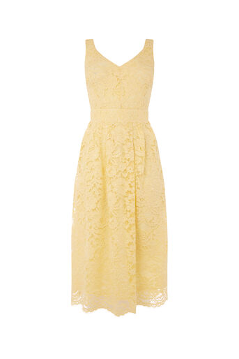 Oasis, LACE SKATER DRESS Pale Yellow 0