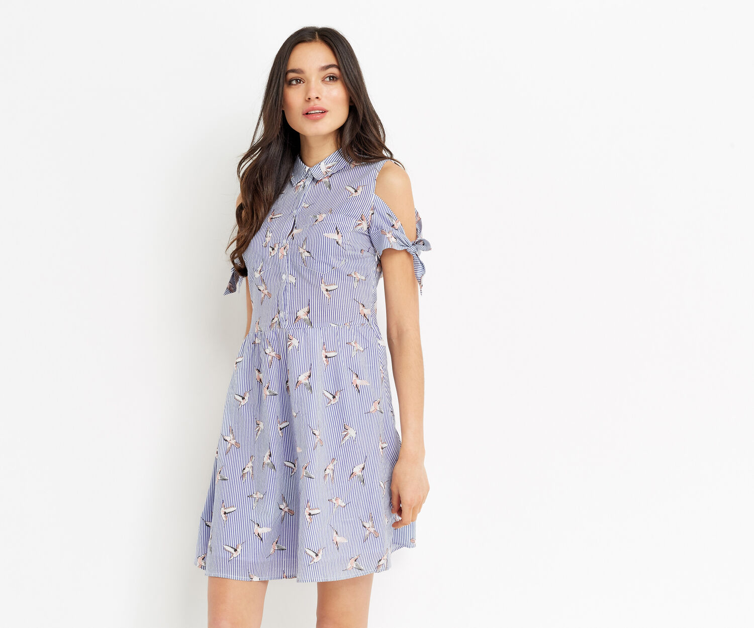 Oasis, STRIPE BIRD SHIRT DRESS Multi Blue 1