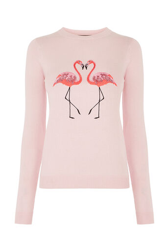 Oasis, Flamingo knit Pale Pink 0
