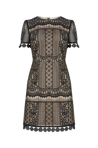 Oasis, GRAPHIC LACE SHIFT DRESS Black 0