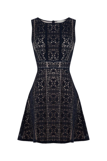 Oasis, Lace Skater Dress Mid Grey 0