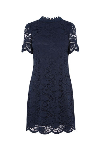 Oasis, LACE HIGH NECK DRESS Navy 0