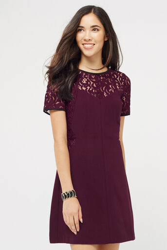 Oasis, LACE PATCHED DRESS Burgundy 1