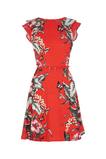 Oasis, Honolulu Skater Dress Coral 0