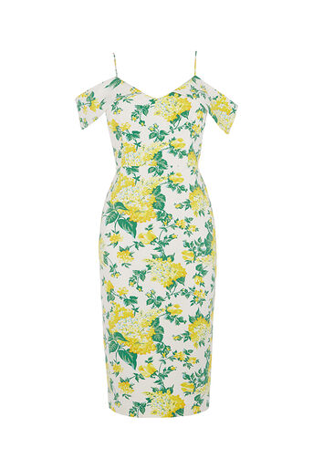 Oasis, SUMMER BLOOM PENCIL DRESS Multi Natural 0