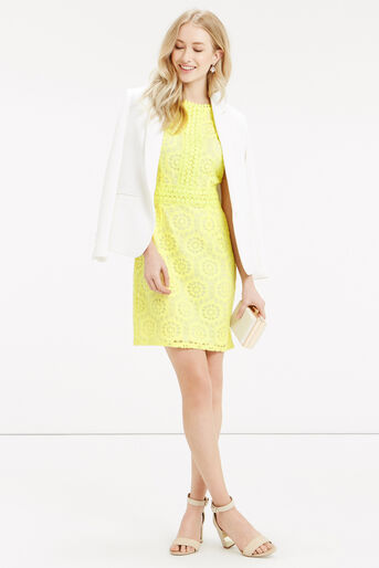 Oasis, Isla Lace Dress Bright Yellow 2