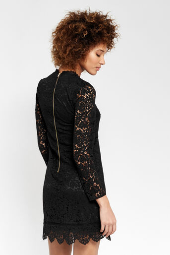Oasis, SCALLOP LACE DRESS Black 3