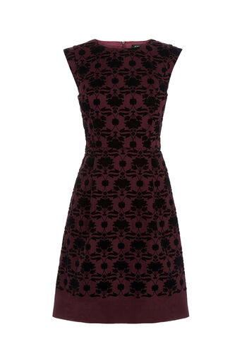Oasis, Flocked Nouveau Skater Dress Multi 0
