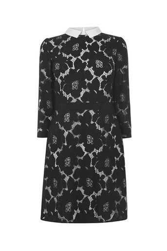 Oasis, LACE COLLAR DRESS Black 0