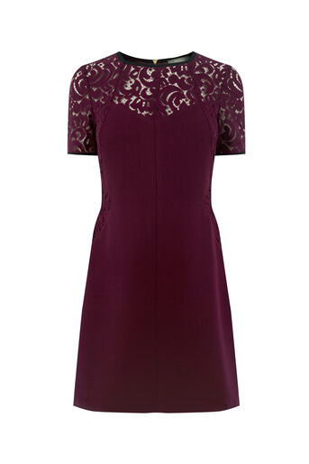 Oasis, LACE PATCHED DRESS Burgundy 0
