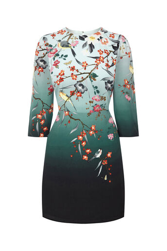 Oasis, HEIDI PLACEMENT SHIFT DRESS Multi Blue 0