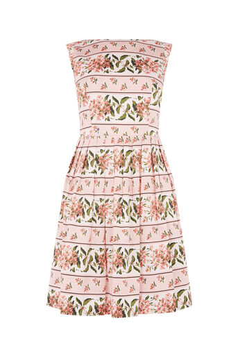 Oasis, STRIPE FLORAL DRESS Multi Pink 0