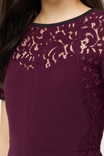 Oasis, LACE PATCHED DRESS Burgundy 4