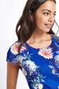 Oasis, LONG ROSE SHIFT DRESS Multi Blue 4