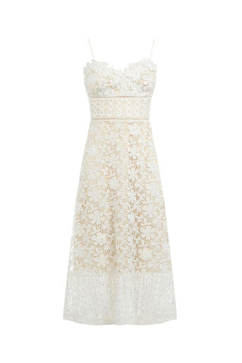Oasis, LIMITED EDITION LACE CAMI DRES Cream 0